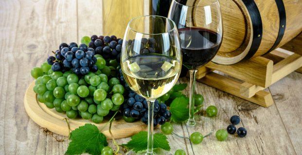 Comment choisir un vin bio ?